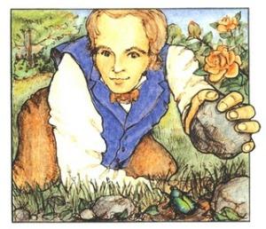 Darwin the beetle collector