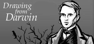 Drawing from Darwin